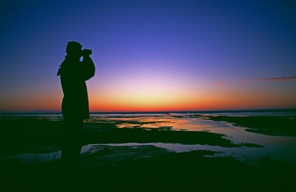 Birdwatching at dawn, Snettisham RSPB Reserve, Norfolk, UK