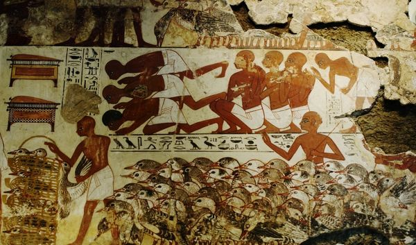 Mural from tomb-chapel of Nebamun at Thebes Egypt. Nebamun was an Ancient Egyptian Nobleman and this shows him overlooking geese brought to him and dates between 1350 - 1400 BC