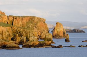 cliff scenery nw mainland shetland scotland may