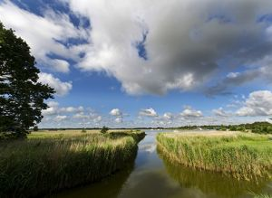 Hickling Broad Norfolk summer