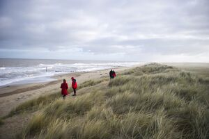 Visitors viewing Grey Seal colony at Winterton Dunes Norfolk December